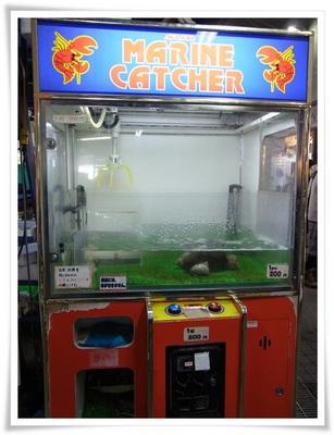 catcher.JPG